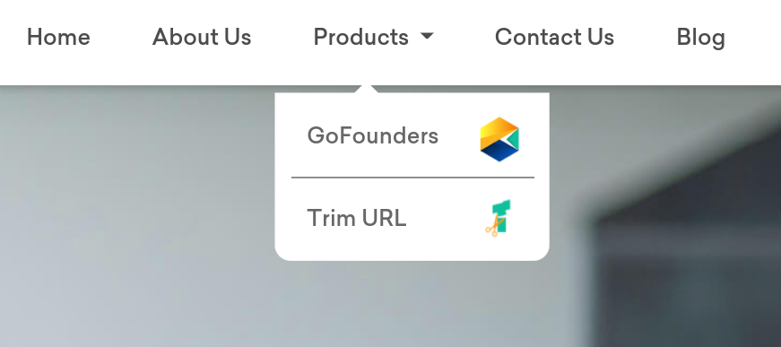 GoFounders is the product of ONPASSIVE